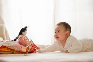 雛人形を見る赤ちゃんの写真素材 [FYI01565085]
