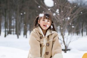 雪合戦をする女の子の写真素材 [FYI01565351]