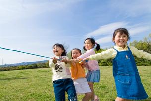 綱引きをする子供達の写真素材 [FYI01565401]