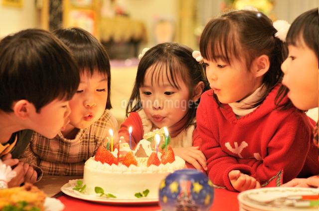 クリスマスケーキのロウソクを消す子供達の写真素材 [FYI01565434]