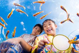 金魚すくいをする浴衣姿の子供の写真素材 [FYI01565533]