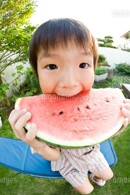 スイカを食べる男の子の写真素材 [FYI01565719]