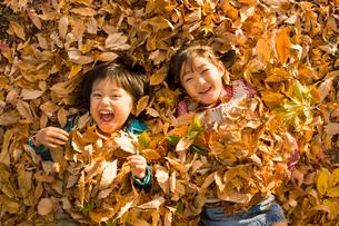 落ち葉に寝転ぶ男の子と女の子の写真素材 [FYI01565749]