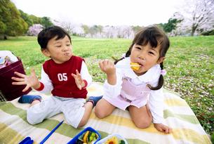 ピクニックの写真素材 [FYI01565900]