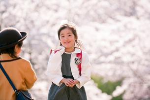 桜の前の入学の女の子の写真素材 [FYI01566122]