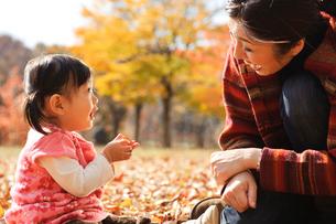 秋の公園の母と子の写真素材 [FYI01566367]
