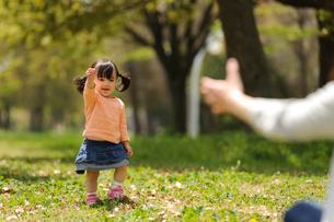 公園でヨチヨチ歩きの赤ちゃんの写真素材 [FYI01566561]