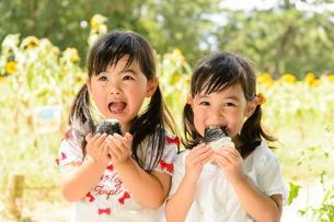 ひまわり畑の前でおにぎりを食べる女の子の写真素材 [FYI01566994]