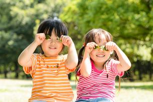 新緑の公園で並んで葉っぱで遊ぶ女の子の写真素材 [FYI01567018]