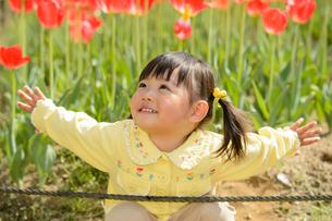 春の公園でチューリップ畑で遊ぶ女の子の写真素材 [FYI01567026]