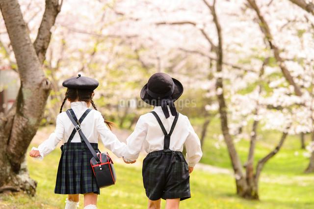 手を繋いで歩く女の子と男の子の写真素材 [FYI01567037]