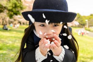 桜の公園の幼稚園の制服の子どもの写真素材 [FYI01567065]