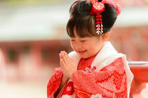 拝む晴着の女の子の写真素材 [FYI01567092]