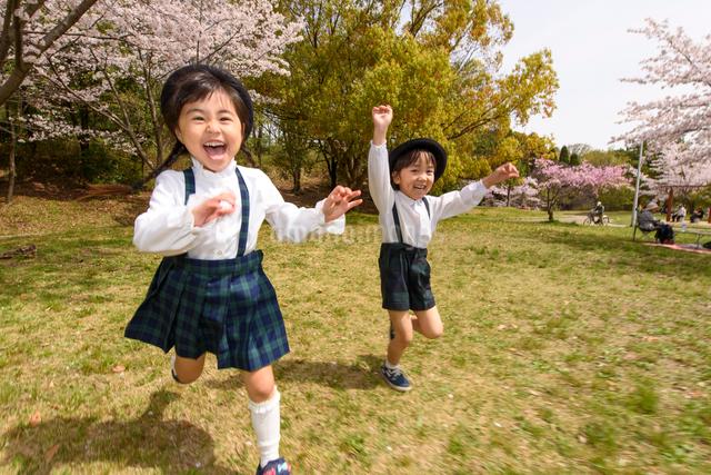 公園をかけっこする女の子と男の子の写真素材 [FYI01567150]
