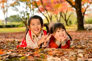 紅葉した落ち葉の上に寝転がる女の子の写真素材 [FYI01567166]
