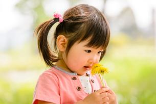 新緑の公園の子どもの写真素材 [FYI01567272]