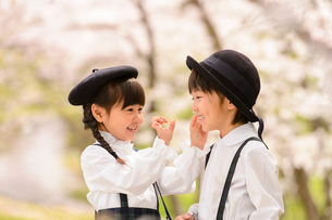 桜の木の前に立つ女の子と男の子の写真素材 [FYI01567298]