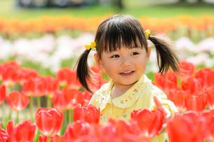 春の公園でチューリップ畑で遊ぶ女の子の写真素材 [FYI01567557]