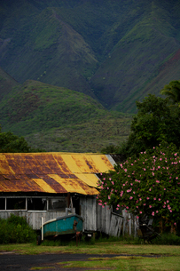 山肌と古びた家とボートとハイビスカスの写真素材 [FYI01567646]