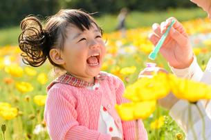 ポピー咲く花畑でシャボン玉で遊ぶ女の子とお母さんの写真素材 [FYI01567684]