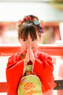 初詣でお願い事をする晴れ着を着た女の子の写真素材 [FYI01567836]