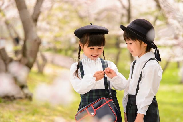 桜の木の前に立つ女の子と男の子の写真素材 [FYI01567910]