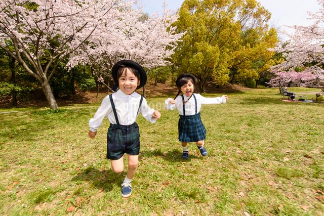 公園をかけっこする女の子と男の子の写真素材 [FYI01567928]