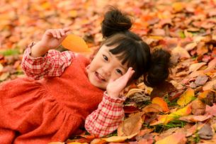 落ち葉の上に寝転がる女の子の写真素材 [FYI01567939]