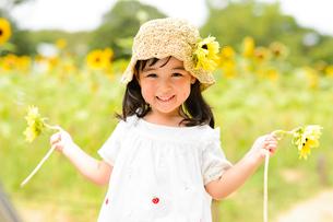 ひまわり畑でひまわりの花を手に持った女の子の写真素材 [FYI01568249]