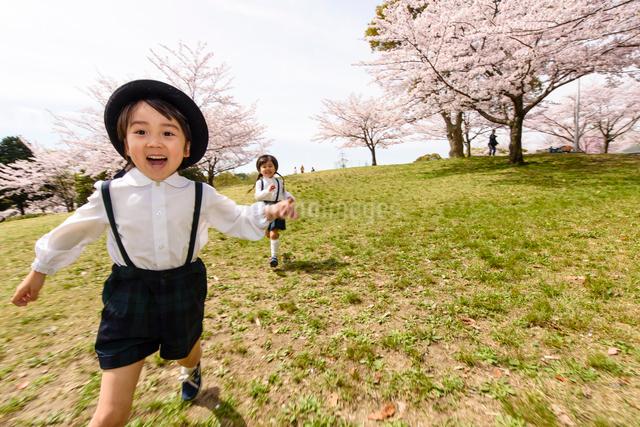 公園をかけっこする女の子と男の子の写真素材 [FYI01568379]