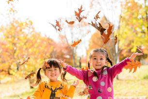 落ち葉を集めてまき散らす女の子の写真素材 [FYI01568446]
