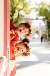 神社の片隅から覗き込む晴れ着を着た女の子の写真素材 [FYI01568478]