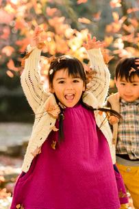 落ち葉を集めてまき散らす女の子男の子の写真素材 [FYI01568528]