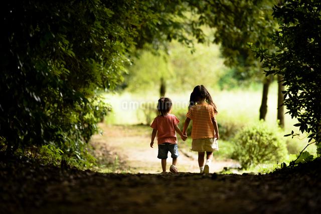 薄暗い木立の中を歩く女の子の写真素材 [FYI01568546]