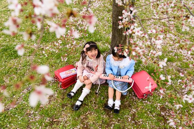 桜の木の下に座る女の子の写真素材 [FYI01568570]