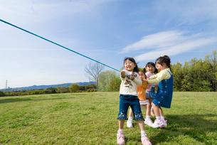 綱引きをする子供達の写真素材 [FYI01568594]