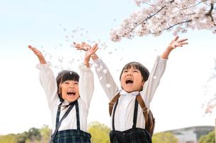 両手を広げて桜の花びらを巻く女の子と男の子の写真素材 [FYI01568620]