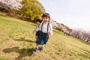 公園をかけっこする女の子と男の子の写真素材 [FYI01568696]