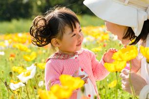 ポピー咲く花畑でシャボン玉で遊ぶ女の子とお母さんの写真素材 [FYI01568703]
