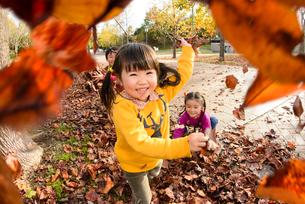 落ち葉を集めて遊ぶ女の子男の子の写真素材 [FYI01568707]
