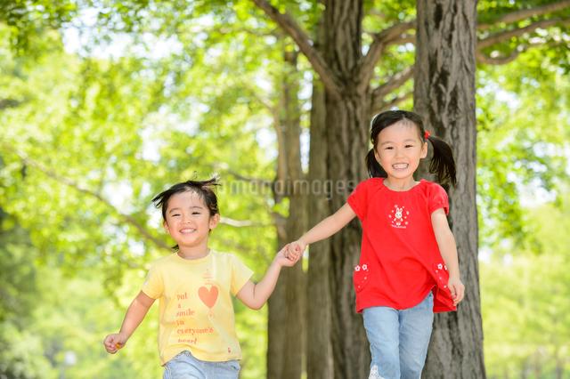 新緑の公園を手を繋いで走る女の子の写真素材 [FYI01568712]