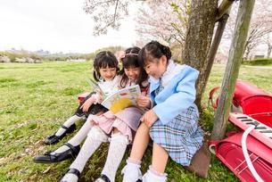 桜の木の下に座る女の子の写真素材 [FYI01568756]