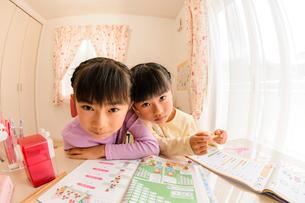子供部屋で勉強する女の子の写真素材 [FYI01568796]