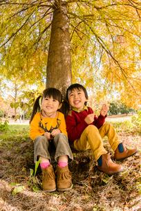 紅葉の木の下に座る女の子と男の子の写真素材 [FYI01568815]