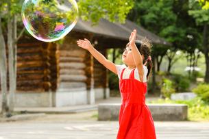 新緑の公園でシャボン玉で遊ぶ女の子の写真素材 [FYI01569050]