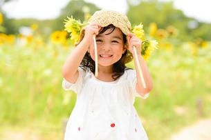ひまわり畑でひまわりの花を手に持った女の子の写真素材 [FYI01569189]