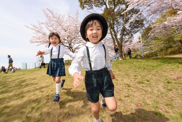 公園をかけっこする女の子と男の子の写真素材 [FYI01569256]