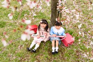 桜の木の下に座る女の子の写真素材 [FYI01569264]