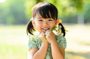 シロツメクサを持った女の子の写真素材 [FYI01569301]