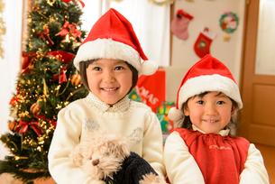クリスマスツリーの前でぬいぐるみを抱く女の子の写真素材 [FYI01569469]